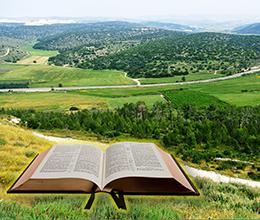 הדרכת אוונגלים בשפלת יהודה - לא נותרו מקומות